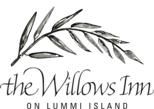 Willows_Logo_Vector_Sketch_Leaf